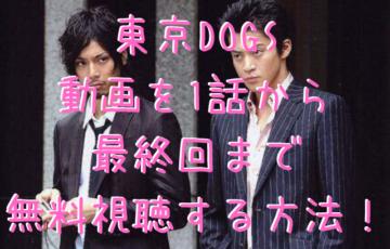 東京DOGS動画を1話から最終回まで無料視聴する方法!