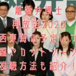 離婚弁護士再放送2020関西東海の予定いつ?続編やカットシーンの視聴方法も紹介!
