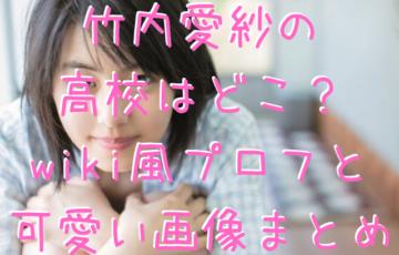 竹内愛紗の高校はどこ?wiki風プロフと可愛い画像まとめ
