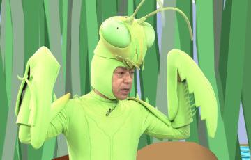 カマキリ先生 特別編 再放送 2020 いつ お正月スペシャル 無料