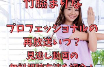 竹脇まりなプロフェッショナル再放送いつ?見逃し動画の無料視聴方法を紹介!