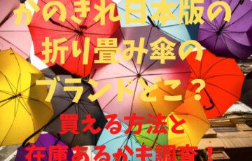 かのきれ日本版の折り畳み傘のブランドどこ?買える方法と在庫あるかも調査!